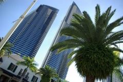 Surfers Paradise - Circle on Cavill