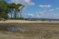 Küste zu Fraser Island