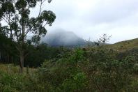 Umgebung Mount Lindesay