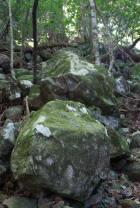 Aufstieg Mount Warning