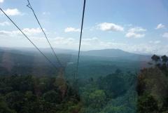 Ausblick aus der Skyrail