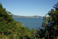 Ausblick auf Roturua