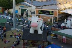 Inflatable Kuh