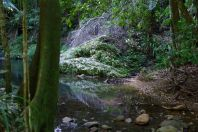 Der Fluss den den Pool speist