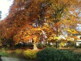 Herbst in Sonneberg