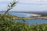 Ausblick von der Mutton Bird Insel