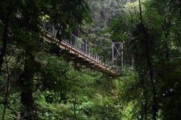 Brücke zu Crystal Falls
