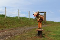 Der Kuhbriefkasten darf bei einem Besuch in Dorrigo nicht fehlen