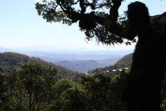 Ausblick vom Baum - 30 m in der Höhe