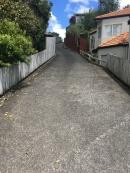 Neues Haus der Kiwi's