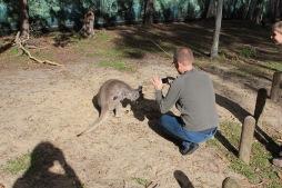 Kent und ein Känguru