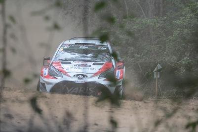 Im Wald steht ein Toyota