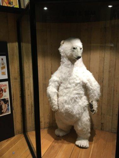 Bundy Bär